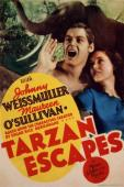 Subtitrare Tarzan Escapes