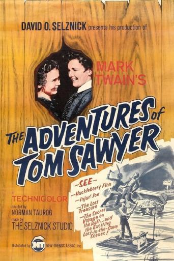 Subtitrare The Adventures of Tom Sawyer