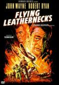 Subtitrare Flying Leathernecks (Devil Dogs of the Air)