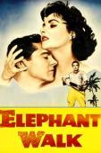 Subtitrare Elephant Walk