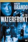 Subtitrare On the Waterfront