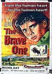 Subtitrare The Brave One