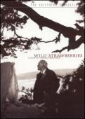 Subtitrare  Smultronstallet (Wild Strawberries) DVDRIP HD 720p 1080p XVID