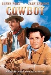 Subtitrare Cowboy