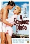 Subtitrare A Summer Place