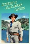 Subtitrare Gunfight at Black Horse Canyon
