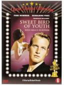 Subtitrare Sweet Bird of Youth