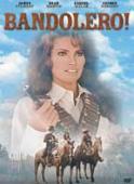 Vezi <br />Bandolero! (1968) online subtitrat hd gratis.