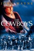 Subtitrare The Cowboys