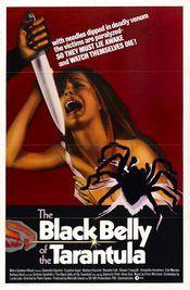 Subtitrare La tarantola dal ventre nero