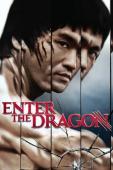 Subtitrare Enter the Dragon