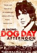 Subtitrare Dog Day Afternoon