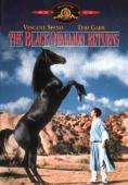 Vezi <br />						The Black Stallion Returns (1983)						 online subtitrat hd gratis.