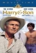 Subtitrare Harry & Son