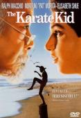 Vezi <br />The Karate Kid (1984) online subtitrat hd gratis.