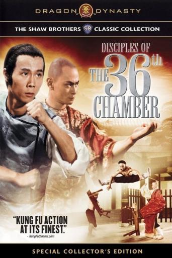 Subtitrare Pi li shi jie (Disciples of the 36th Chamber)