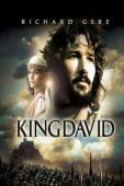 Subtitrare King David