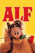 Subtitrare ALF - Sezonul 1
