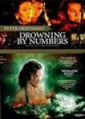 Subtitrare Drowning by Numbers