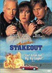 Subtitrare Another Stakeout