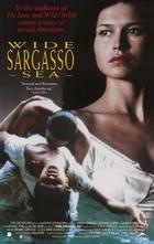 Subtitrare Wide Sargasso Sea