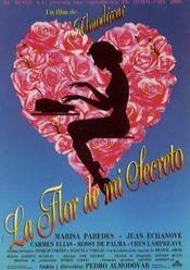 Subtitrare La flor de mi secreto (The Flower of My Secret)