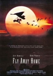 Subtitrare Fly Away Home