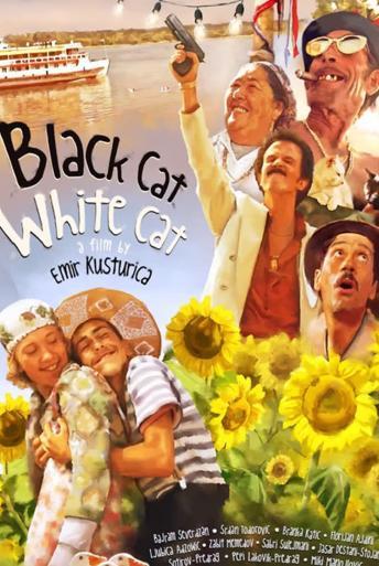 Vezi <br />Black Cat, White Cat (Crna macka, beli macor) (1998) online subtitrat hd gratis.