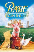 Trailer Babe: Pig in the City
