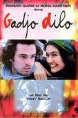 Subtitrare Gadjo dilo (L'Etranger fou)