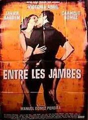 Subtitrare  Entre las piernas (Between Your Legs) DVDRIP XVID
