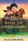 Subtitrare Where the Red Fern Grows