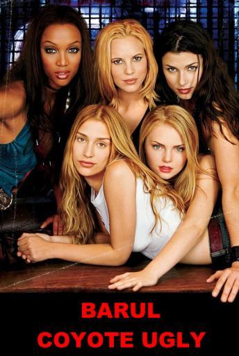 Vezi <br />Coyote Ugly (2001) online subtitrat hd gratis.