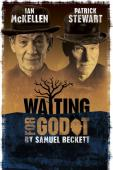 Subtitrare Waiting for Godot