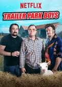 Subtitrare Trailer Park Boys - Sixth Season
