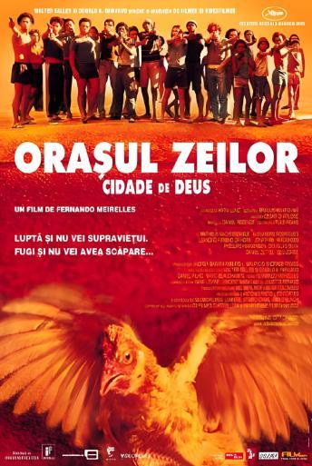 Subtitrare Cidade de Deus (City of God)