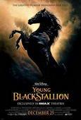 Vezi <br />The Young Black Stallion  (2003) online subtitrat hd gratis.