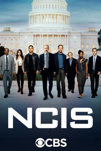 Subtitrare NCIS - Sezonul 14