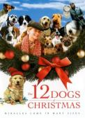 Vezi <br />						The 12 Dogs of Christmas  (2005)						 online subtitrat hd gratis.