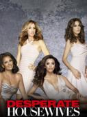 Subtitrare Desperate Housewives - Sezonul 1