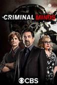 Subtitrare Criminal Minds - Sezonul 12