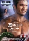 Subtitrare From Mexico with Love