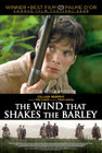 Subtitrare The Wind That Shakes the Barley