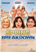 Vezi <br />Spring Breakdown  (2009) online subtitrat hd gratis.