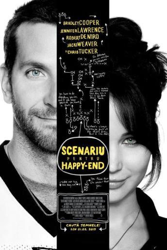Subtitrare Silver Linings Playbook