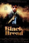 Subtitrare Pa negre (Black Bread)