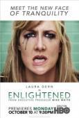 Subtitrare Enlightened - Sezonul 1