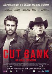 Subtitrare  Cut Bank DVDRIP HD 720p 1080p XVID