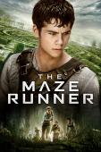 Subtitrare  The Maze Runner DVDRIP HD 720p 1080p XVID