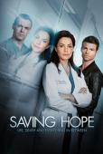 Subtitrare  Saving Hope - Sezonul 2 HD 720p